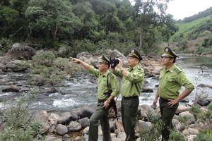 Bắc Giang: Nỗ lực bảo vệ rừng ngày xuân