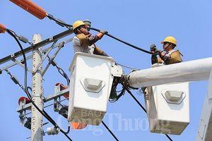 Điện lực TP. Hồ Chí Minh bảo đảm cấp điện an toàn, liên tục trong dịp Tết Kỷ Hợi