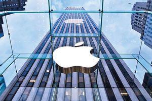 Cơn 'đau đầu' của CEO Apple