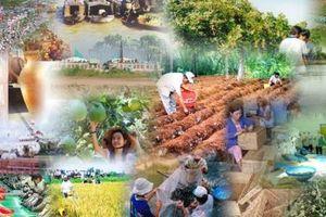 Việt Nam lọt vào top 60 nền kinh tế sáng tạo nhất thế giới