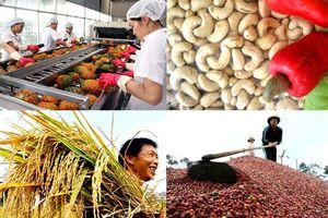Trung Quốc vẫn là thị trường nhập khẩu lớn nhất của Việt Nam trong năm 2018