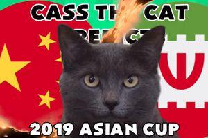 Mèo Cass 'tiên tri' kết quả trận Trung Quốc vs Iran hôm nay 24/1