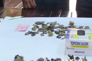 Bàn giao mẫu vật của các liệt sỹ phi công hy sinh tại Tam Đảo
