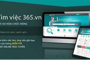 Hạ gục nhà tuyển dụng với các mẫu CV online tại Timviec365.vn