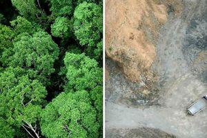 Những bức ảnh tự nhiên theo trào lưu #10yearschallenge đáng suy ngẫm
