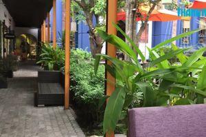Bà chủ 'chất nhất Sài Gòn' chia sẻ bí quyết sống 'xanh'