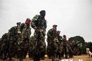 'Colombia và ELN cần tuân thủ nghị định thư của Đối thoại hòa bình'