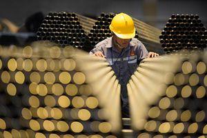 Tập đoàn Hoa Sen chấm dứt hoạt động 21 chi nhánh để tái cấu trúc