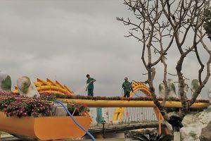 Giới trẻ Đà thành có thêm địa điểm chụp hình 'đẹp như mơ'