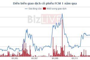 Khoáng sản Fecon (FCM) dự kiến doanh thu, lợi nhuận 2019 thụt lùi
