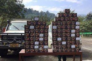 Bắt giữ vụ vận chuyển gần 100 bánh pháo lậu từ Lào về Nghệ An tiêu thụ