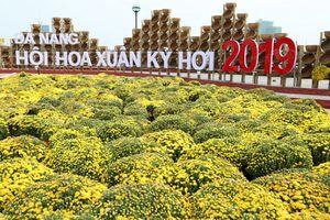 Đà Nẵng: Tết Kỷ Hợi có thêm địa điểm tham quan đặc biệt ấn tượng