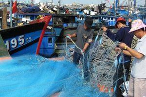 Ngư dân Đà Nẵng 'bội thu' hải sản chuyến biển cuối năm