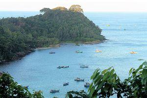 Bài 1: Sức sống mới trên đảo xa