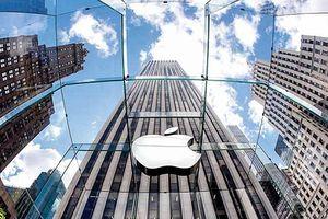 Vi phạm bằng sáng chế, Apple bị phạt 440 triệu USD