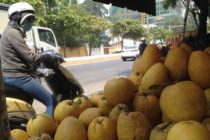 Bưởi Kỳ Đà 'khủng', dừa tài lộc đổ bộ chợ Tết Sài Gòn