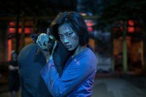 Showbiz 29/1: Phim của Ngô Thanh Vân bị cấm chiếu vì quá bạo lực?