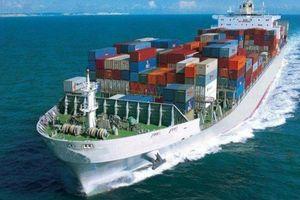 Nhiều cơ chế ưu đãi nâng thị phần đội tàu biển Việt Nam
