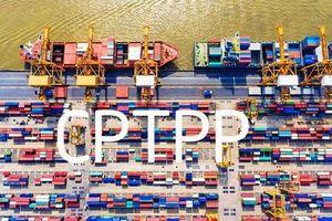 Bộ Tài chính xây dựng chính sách thuế thực hiện Hiệp định CPTPP