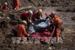 Số nạn nhân thiệt mạng trong vụ vỡ đập tại Brazil tăng lên 84 người
