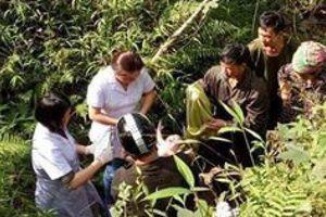 Thai phụ bị rơi xuống khe núi, bác sĩ đến tận hiện trường đỡ đẻ