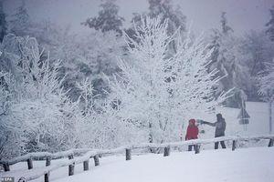 Thời tiết khắc nghiệt, Châu Âu tê cứng vì bão tuyết và băng giá