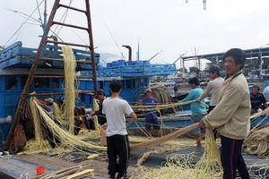 Ngư dân miền Trung: Một mùa Tết ấm