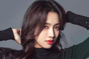 Tương lai mờ mịt, đầy khó khăn của ca sĩ Việt ra mắt tại Hàn Quốc