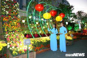 Đường hoa Cần Thơ làm từ 80.000 chậu hoa tươi