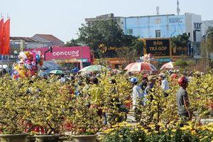 Quảng Trị tấp nập chợ hoa ngày 29 Tết