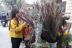 Chợ hoa Nam Định nhộn nhịp ngày giáp Tết
