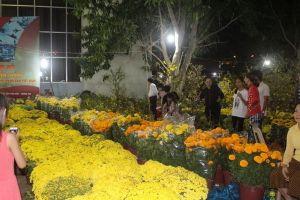 Cẩn thận với nạn móc túi, cướp giật tại chợ hoa