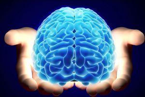 Năm mới học điều mới với 8 ứng dụng cực kỳ 'bổ não'