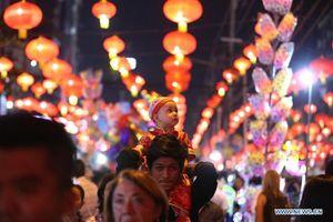 Rộn ràng không khí đón năm Kỷ Hợi trên khắp Châu Á