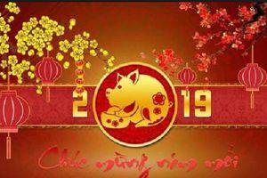 Tin nhắn chúc mừng năm mới cho sếp hay và ấn tượng nhất