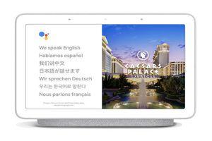 Google Assistant hỗ trợ phiên dịch thời gian thực, có tiếng Việt
