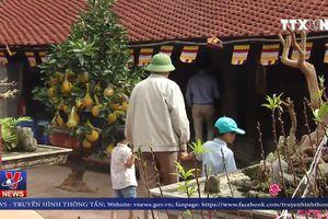 Về thăm ngôi chùa cổ nhất Việt Nam