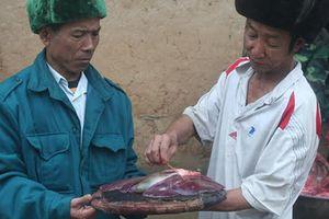 Ly kỳ xem bói bằng gan lợn của người Hà Nhì