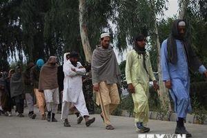 Taliban thông báo đàm phán 'thành công' với chính phủ Afghanistan