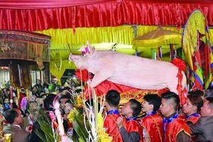 Chuyện ít biết về lễ rước 'ông lợn' trong đêm
