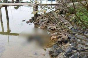Phát hiện thi thể người đàn ông đang phân hủy trôi dạt dưới sông Lam