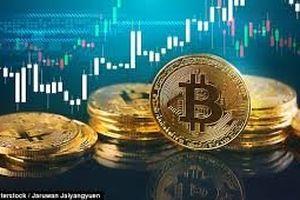 Biến động Bitcoin giảm xuống mức thấp nhất trong 12 tuần