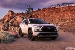 Toyota RAV4 TRD Off-Road 2020 ra mắt - thách thức mọi địa hình