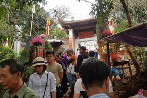Đầu năm vãn cảnh chùa Tây Phương