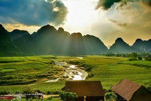 Quảng Bình: 'Kim cương xanh' hé sáng