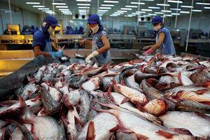 Triển vọng đột phá của cá tra năm 2019