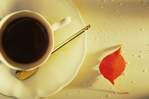 Tử vi tuần mới (11/2 – 17/2): Tuổi Mão may mắn, tuổi Hợi tài lộc khởi sắc