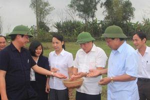 Quảng Trị: Lãnh đạo tỉnh động viên nông dân ra đồng sản xuất đầu năm