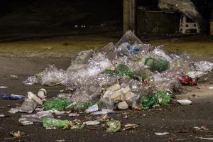Đà Lạt sau Tết ngập trong rác: Làm ơn có ý thức khi đi du lịch