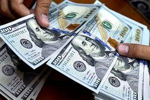 Ngày đầu năm mới, tỷ giá trung tâm vọt tăng gần 30 đồng/USD